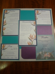 Complete with 5 card inserts, Directions, Accommodations, Reception, Brunch and RSVP